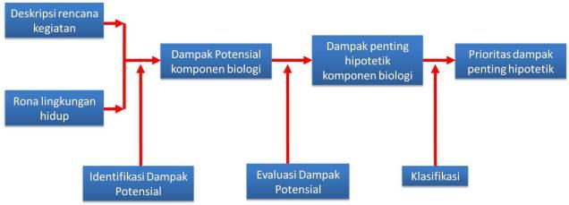 Pelingkupan Aspek Biologi
