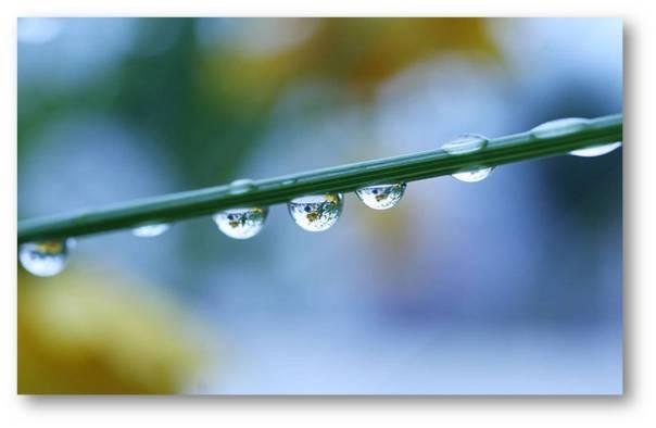 Fungsi Air bagi Tubuh