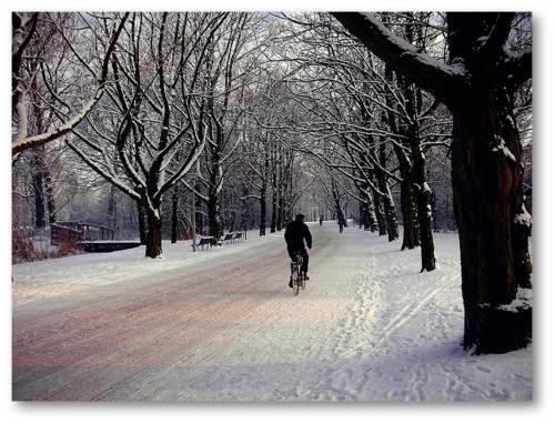 8 Jalan-Jalan Asik di Amsterdam