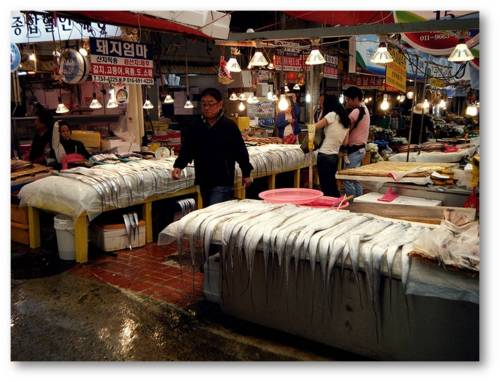 Keindahan Pulau Jeju yang memanjakan mata