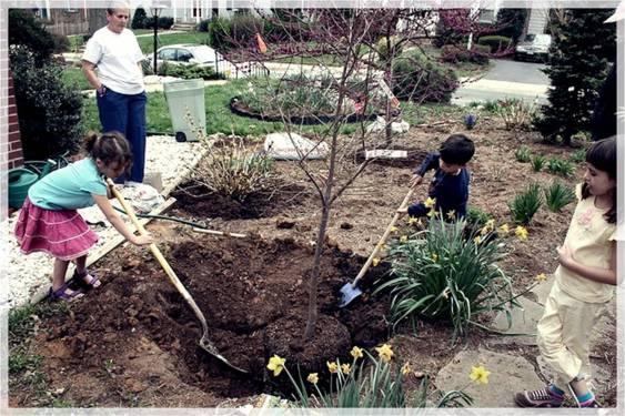 Mengajari Anak Melestarikan Lingkungan Sekitar